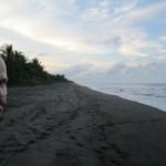 On the beach at dusk