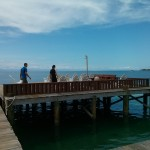 BICD's dock