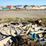Dépotoir à Aralsk