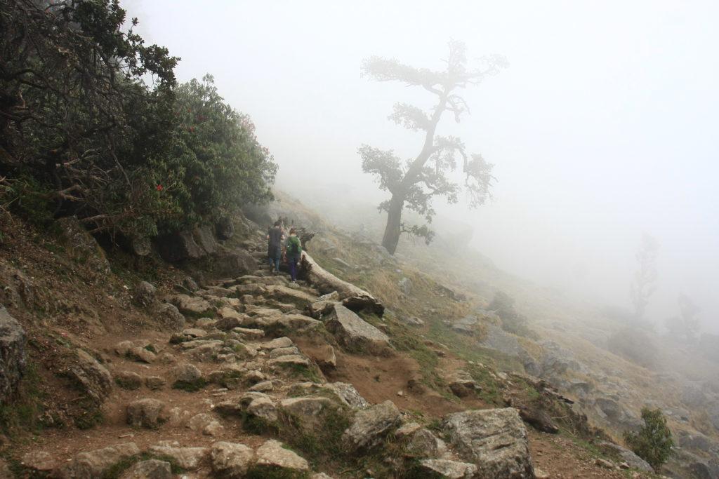 Trek vers Triund, McLeod Ganj, Himachal Pradesh, Inde
