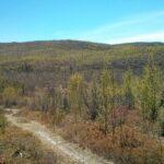 Tour du Nord du Québec – Jour 3 (Chibougamau à Lebel-sur-Quévillon)